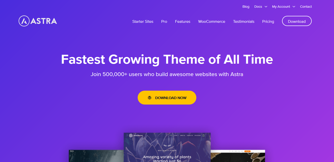 Astra WordPress Theme 3.3.2 + Astra Pro Addon 3.3.1 + Premium Agency Sites 2.6.0