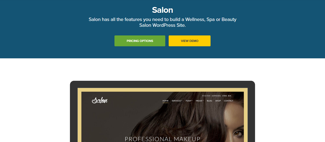 CSS Igniter Salon WordPress Theme 1.8.5