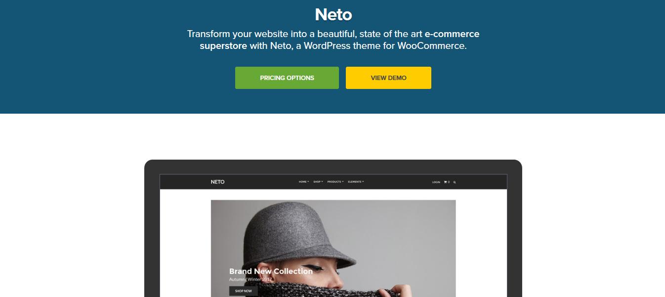 CSS Igniter Neto WooCommerce Theme 1.9.3