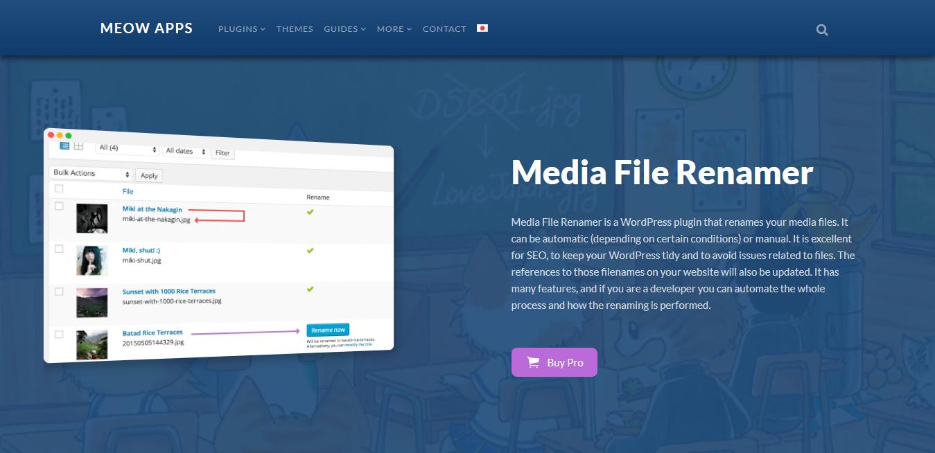 Media File Renamer Pro 5.3.2