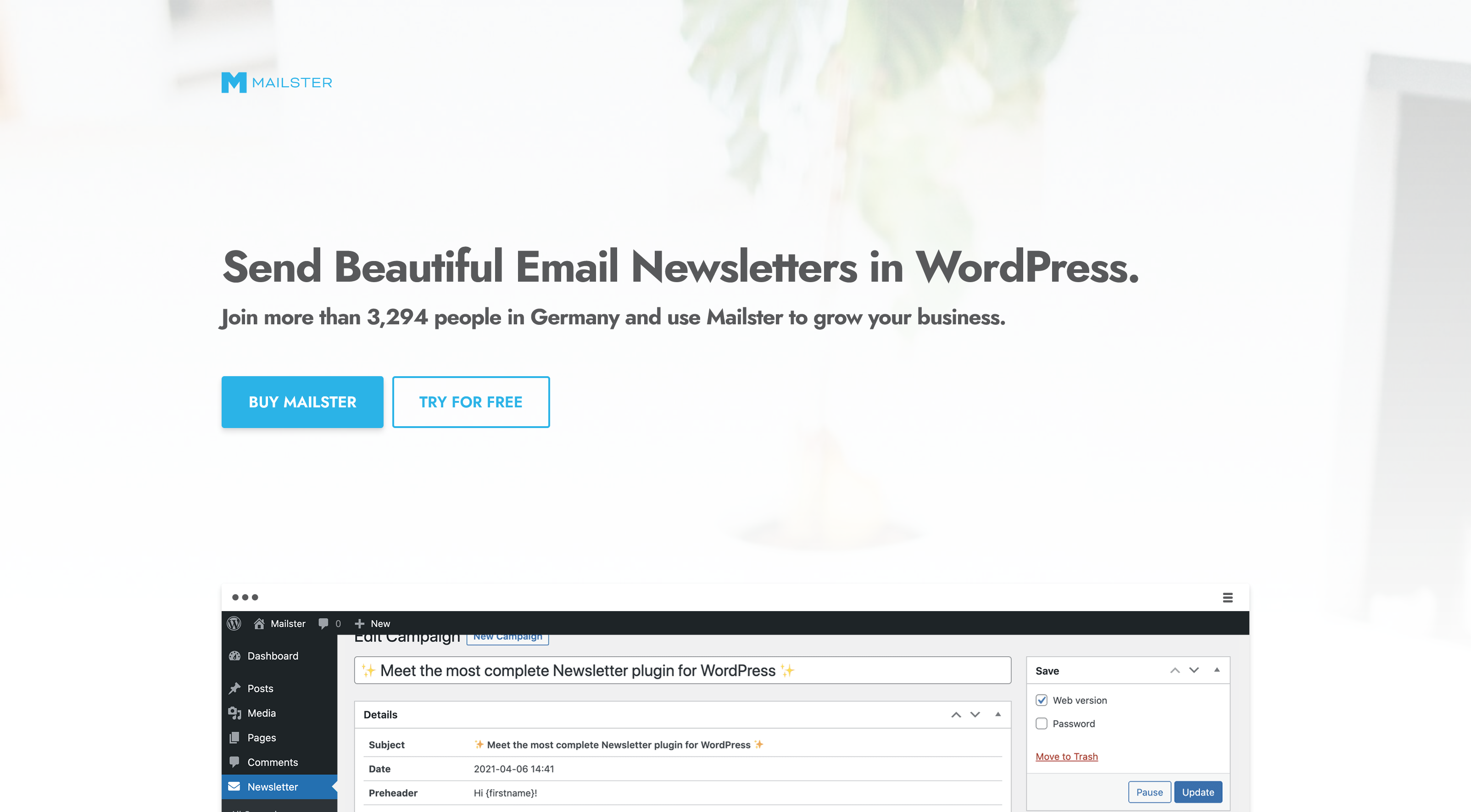 Mailster 3.0.3 – Email Newsletter Plugin